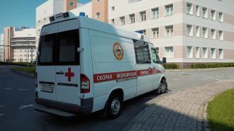 В аварии в поселке Паша пострадали водитель мопеда и пешеход