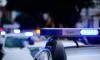 На Ланском шоссе 84-летний водитель сбил троих детей