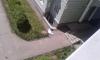 На проспекте Героев из окна выпал человек