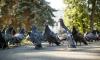 В петербургском сквере пьяная башкирка напала на собутыльника с ножом