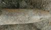 В Шушарах нашли гранату и артиллерийский снаряд времен войны