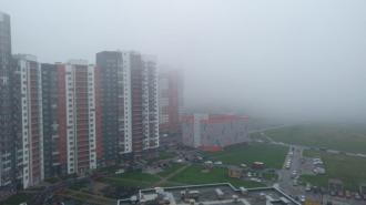 Густой туман покрыл улицы Петербурга после ночного ливня