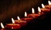 Петербуржцы выстроились в живой самолет в память о жертвах авиакатастрофы над Синаем