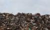 Борис Пайкин может довести Петербург и область до экологической катастрофы