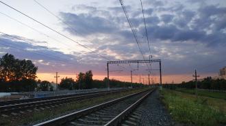 В Выборге грузовой поезд насмерть сбил мужчину, сидевшего на рельсах