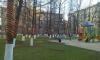 В Московском районе деревья украсили георгиевскими ленточками