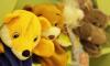 Прокуратура Петербурга проверяет детский сад, в котором крыса укусила ребенка
