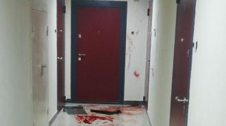 Жителей Кудрово напугали следы крови в подъезде: фото