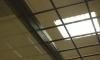 Головастый житель Пензы застрял головой в решетке полицейского участка