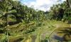 На Бали эвакуированы уже 42 тысячи человек из-за возможного извержения вулкана