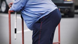 Глава МВД: толстые и пузатые аттестацию в полицию не пройдут!