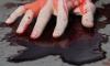 """На фоне """"зачисток"""" в Петербурге зарезали двух мигрантов"""