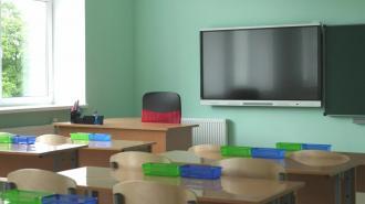 В гимназии в Адмиралтейском районе выявлена кишечная инфекция