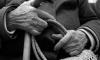 Мигрант-геронтофил раздел догола пенсионерку в Металлострое