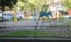 В Подмосковье 55-летний педофил с помощью котят поймал и изнасиловал двух маленьких девочек