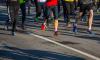 Петербургские бегуны и велосипедисты заблокируют движение на ЗСД