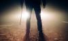 На Колтушском шоссе из лап извращенца девушку спас случайный прохожий