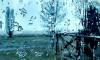 Во вторник в Петербурге прогнозируют мокрый снег