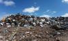 В Ленобласти ожидается снижение тарифов на вывоз мусора на 12%