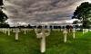 Способ из 90-х работает: в Москве похоронили заживо бизнесмена за долги