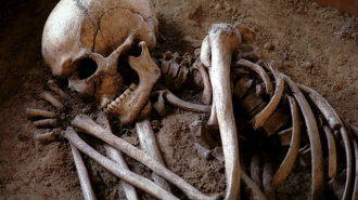 В Гатчине найден скелет человека