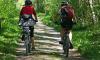 В Петербурге определены новые подрядчики по планировке велодорожек в городе