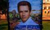 Петербуржцы хотят вернуть портрет Шварценеггера в Александровский сад