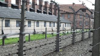 Зеленский призвал страны мира не допустить повтора ужасов Второй мировой войны