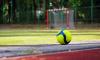 В сентябре УЕФА проверит готовность Петербурга к Евро-2020