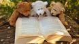 Петербург признан самым читающим регионом в России