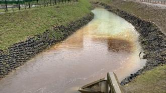 Эконадзор выясняет причины загрязнения Безымянного ручья в Кудрово