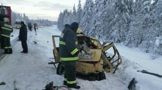 В Карелии в ДТП с лесовозом погибли двое детей и двое взрослых из Петербурга