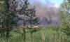 У деревни Чёрная Лахта вспыхнула трава