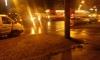 Таксист-убийца раздавил неспешного пешехода на проспекте Науки