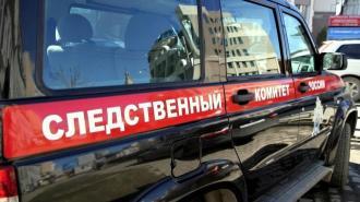 СК возбудил дело по факту пропажи пятиклассника на Сахалине