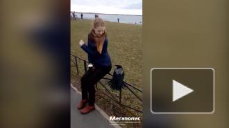 Видео: на улице Маршала Казакова ворона заигрывала с девушкой