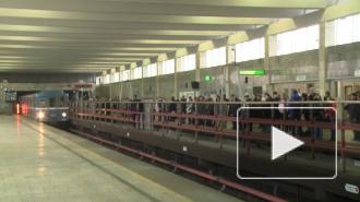 Полиция выясняет личность мужчины, который прыгнул сегодня под колеса поезда петербургского метро и убежал в тоннель