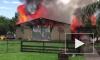Видео из Флориды: На ранчо сгорели заживо более 300 экзотических животных