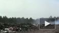 Пожар на свалке в Ленобласти охватил площадь в 2,5 ...