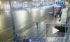 Сбившего толпу пешеходов на Невском водителя отправили в колонию на 8,5 лет