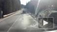 Видео, где старый живодер привязал собаку к машине ...