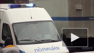В Кемеровской области собака 10 дней охраняла убитого ножом хозяина и привлекала внимание лаем