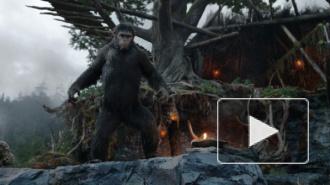 """""""Планета обезьян: Революция"""" (2014): обезьяны порабощают человечество"""