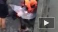 В сети появилось видео о попытке спасения утонувшего ...