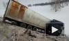 Аварию фуры, перевозившей тигров в Оренбургской области, зафиксировали на видео