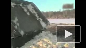Куриный мор шагает по России. Производство яиц экономически не выгодно