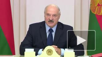 Лукашенко объяснил, почему Белоруссия продолжит закупать нефть не в России