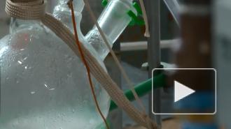 В Кембридже научились генерировать чистое топливо из света, воды и СО2