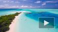 Названы сроки открытия Мальдив после пандемии коронавиру...