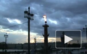 Гражданин Германии найден мертвым у Ростральных колонн в Петербурге